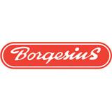 Borgesius